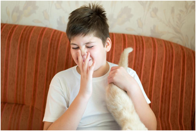 What Are the Most Common Mistakes to Avoid When Removing Pet Odor?