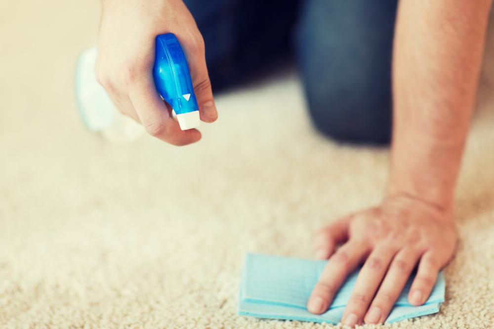 Why DIY Carpet Cleaning Is Bound To Fail